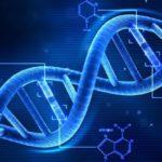 Come riprogrammare il DNA